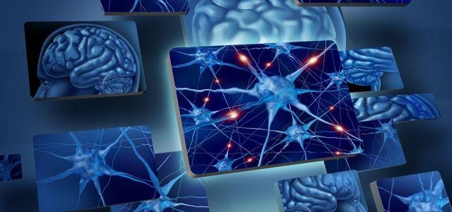 Модель взаимодействия нейронов