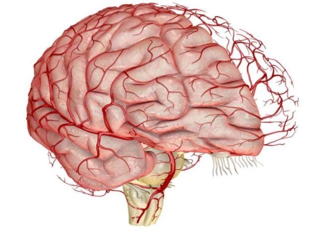 Нарушение кровообращение головного мозга лечение